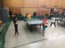Mini-Meisterschaften 2017 - Kreisentscheid_2