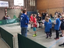 Mini-Meisterschaften 2017 - Kreisentscheid